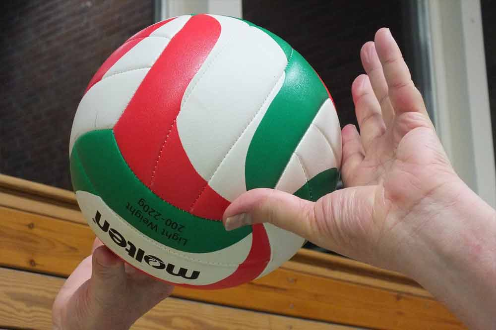 Volleyball Sportverein Harburg